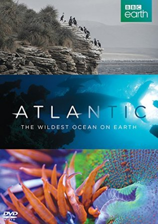Атлантика: Самый необузданный океан на Земле / Atlantic: The Wildest Ocean on Earth (2015)